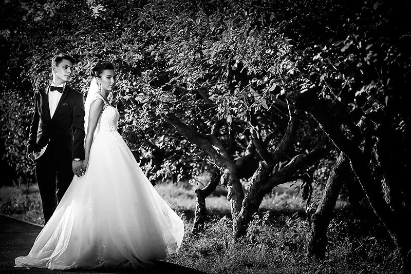 Andreea + Vlad ~ Fotografii de nunta