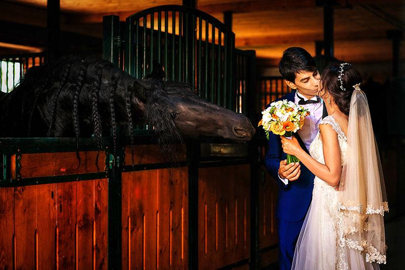 Oana si Fabian – Fotografii de nunta